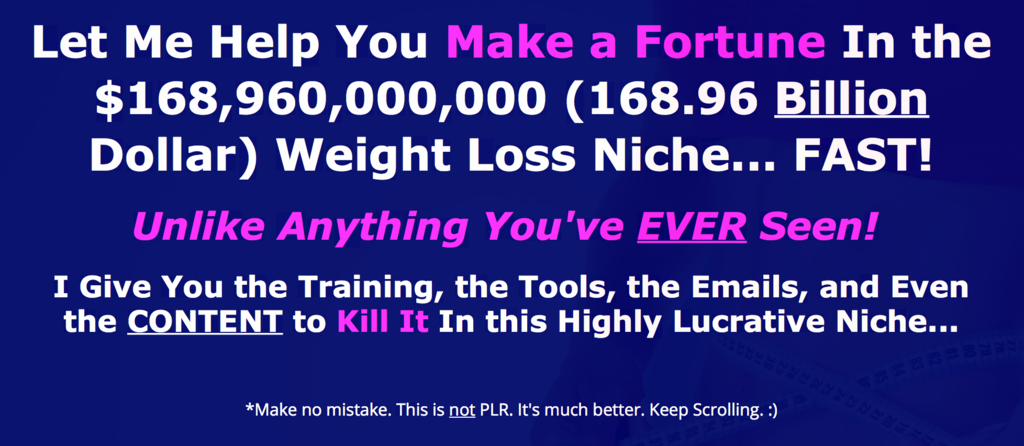 Weight Loss Niche Domination Review